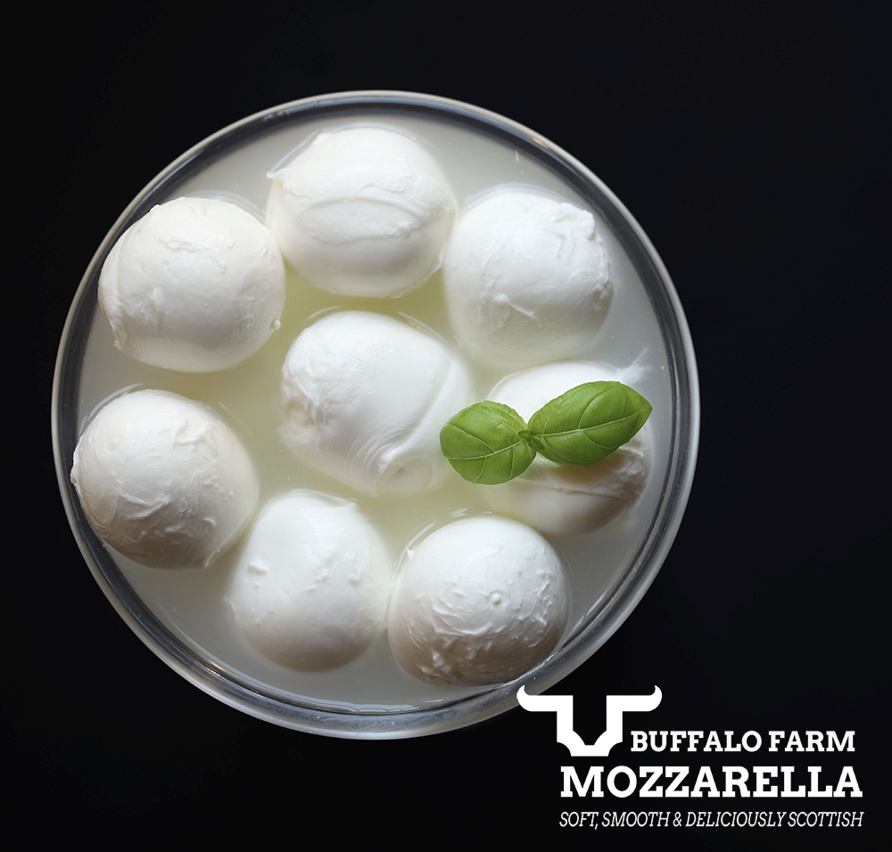Buffalo Mozzarella Scotland