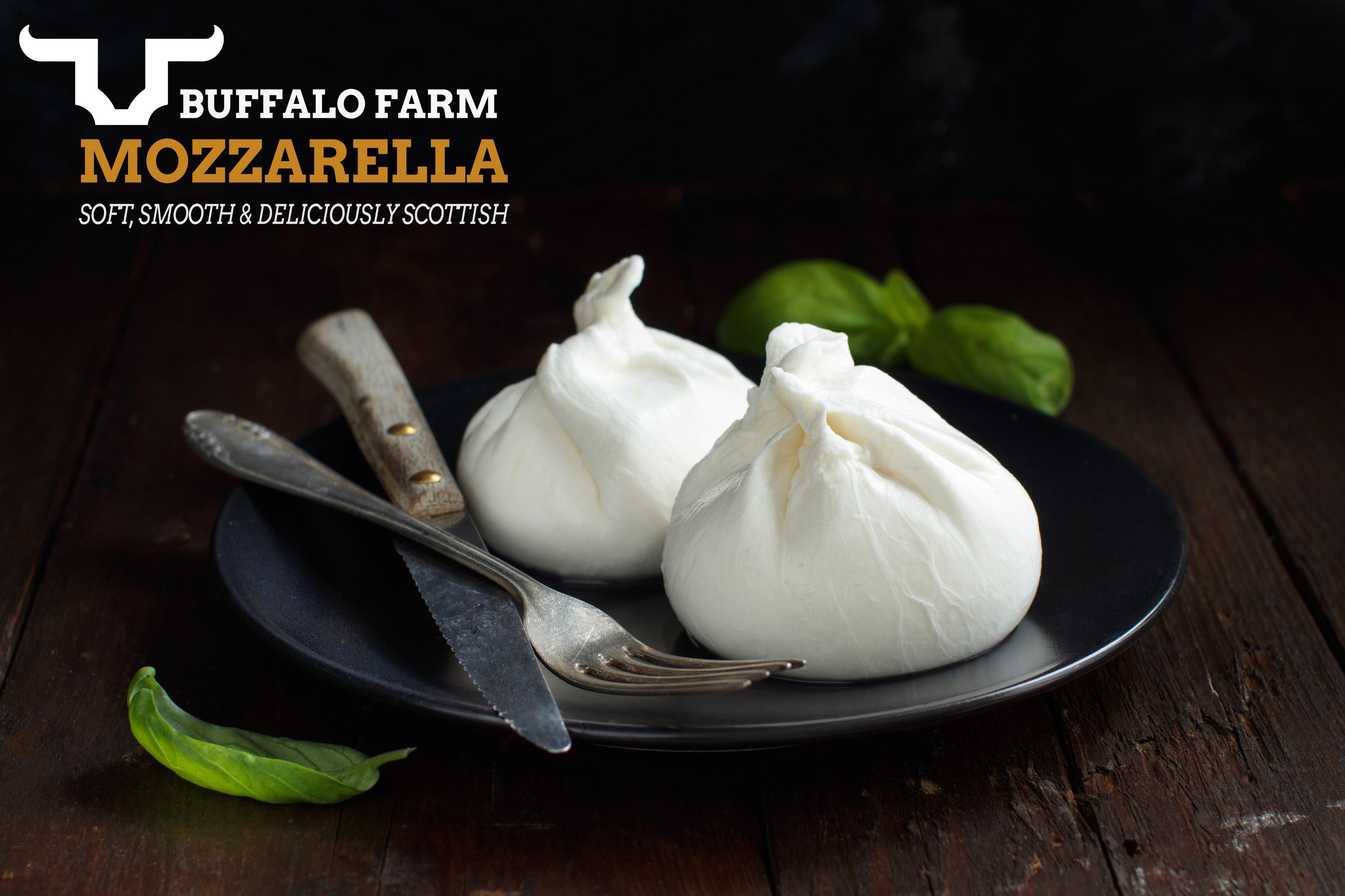 Buffalo Farm Buffalo Mozzarella